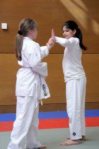 Aikido Kids 2